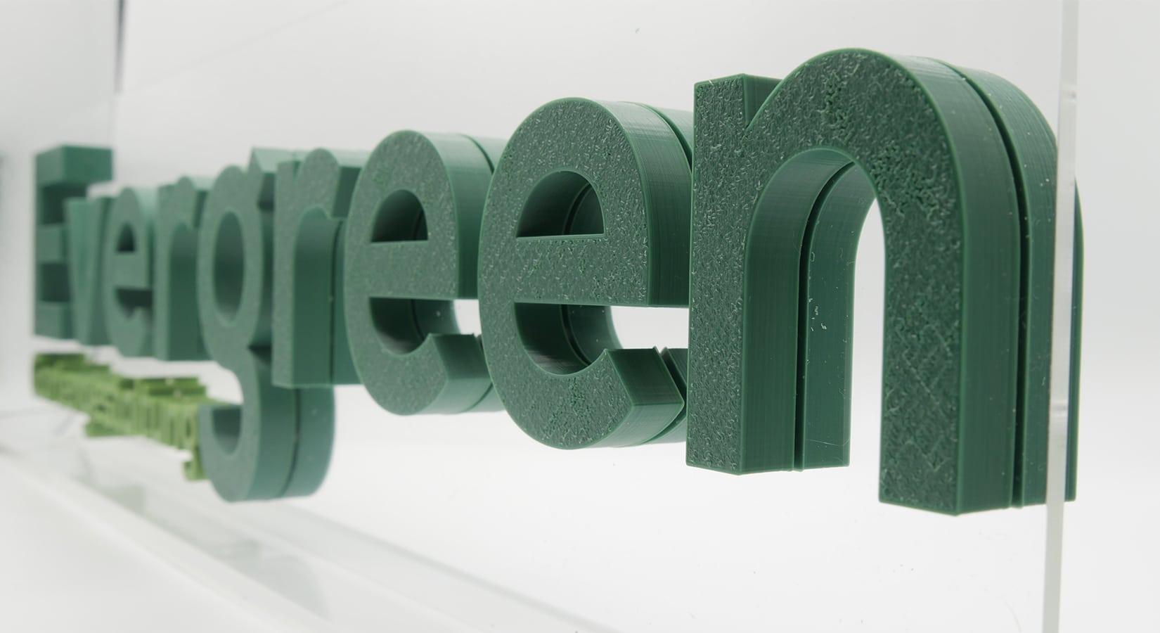 Kundenprojekte - Evergreen (Nahaufnahme 2)